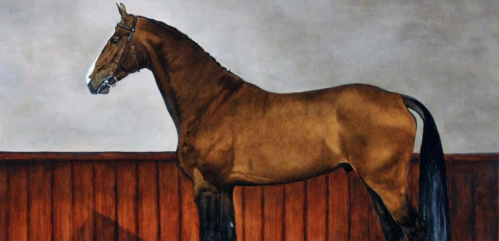 Paard in stal